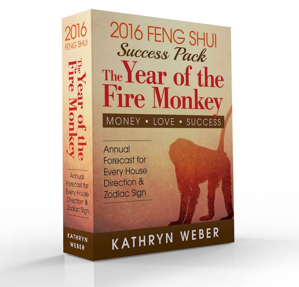 2016: The Year of the Fire Monkey