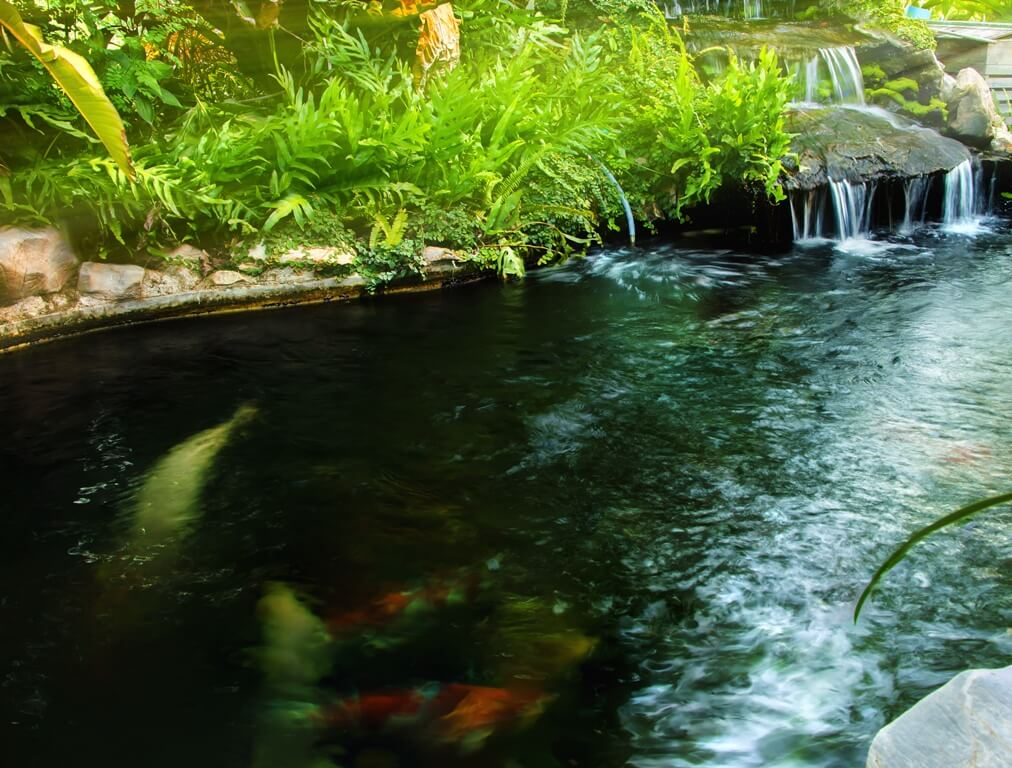 Feng Shui Water Features That Refresh And Attract Health