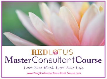 Master Consultant